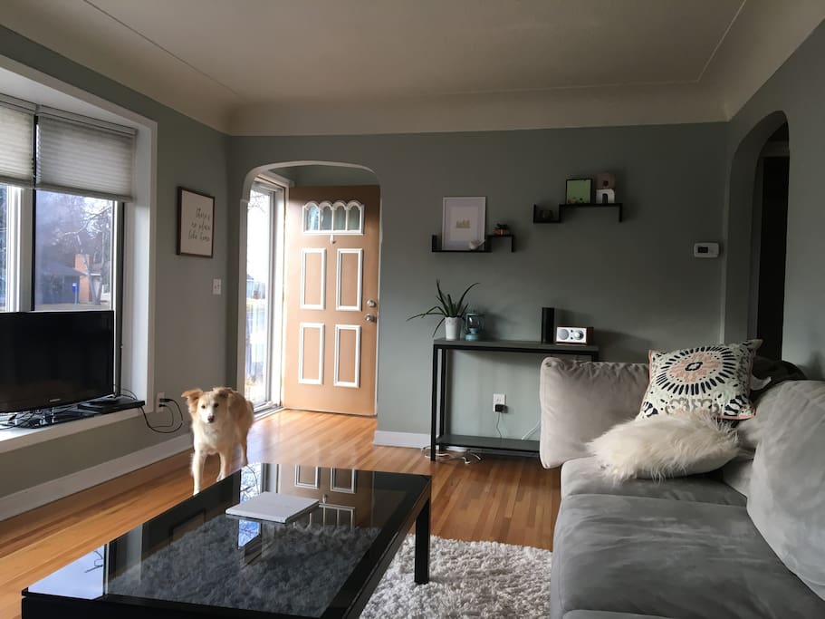 Living Room Adjacent to Guest Bedroom + Cute Puppy