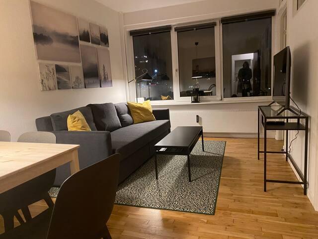 T31bst, 3 bedroom apt in suburb to Copenhagen