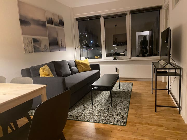 T31bst, 3 bedroom apt in suburb to Copenhagen
