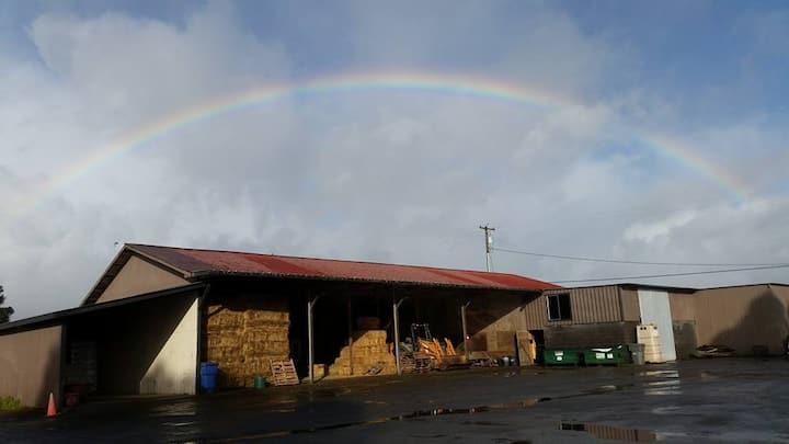 Santa Rosa Horse Company Annex
