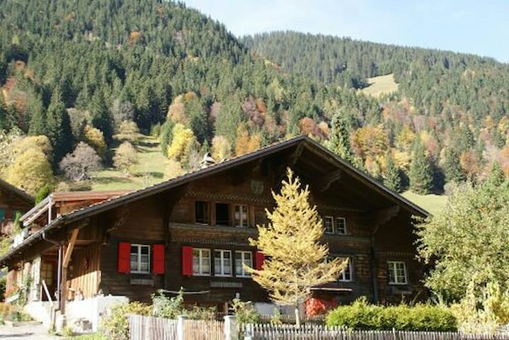 Swiss Mountain Valley Chalet - Saxeten - House