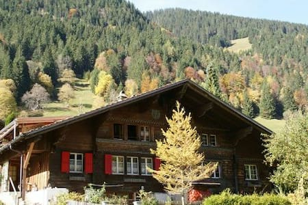 Swiss Mountain Valley Chalet - Saxeten - Dom