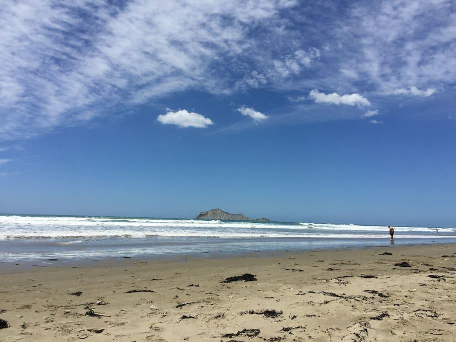 Stunning Waimarama Beach!