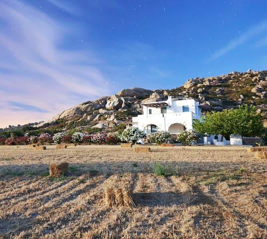 Waves & Rocks Villa - Naxos - Villa