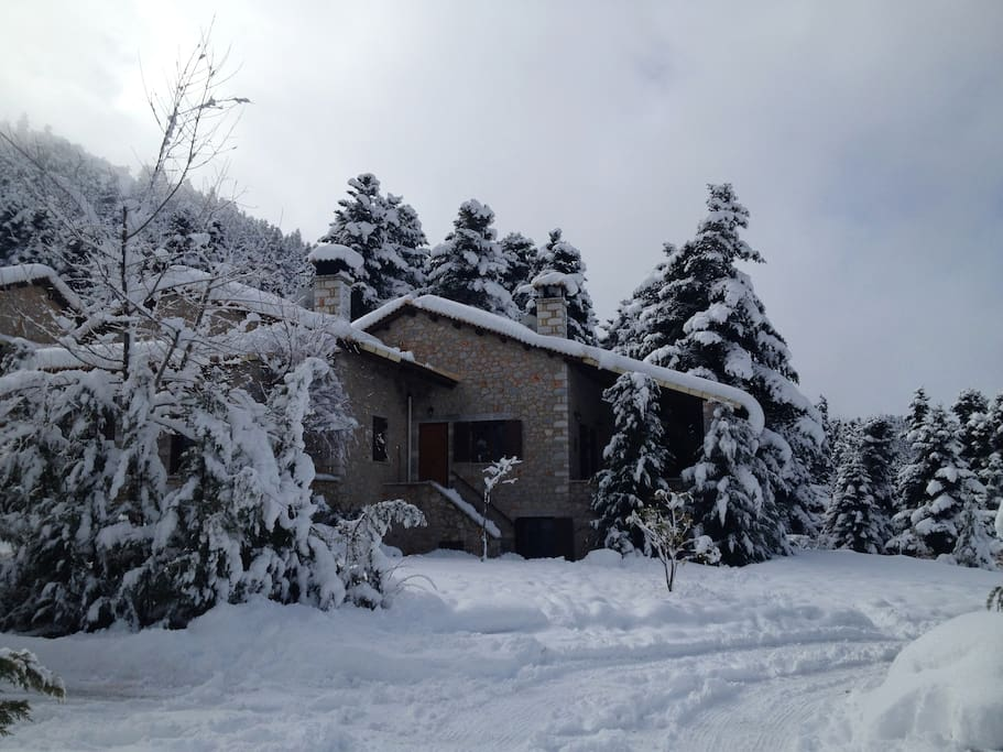 Winter at Serendipity Chalet