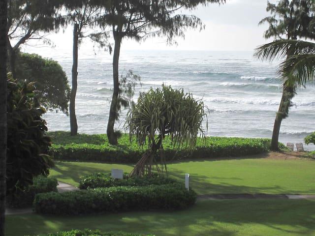 Kauai Ocean View Condo #320