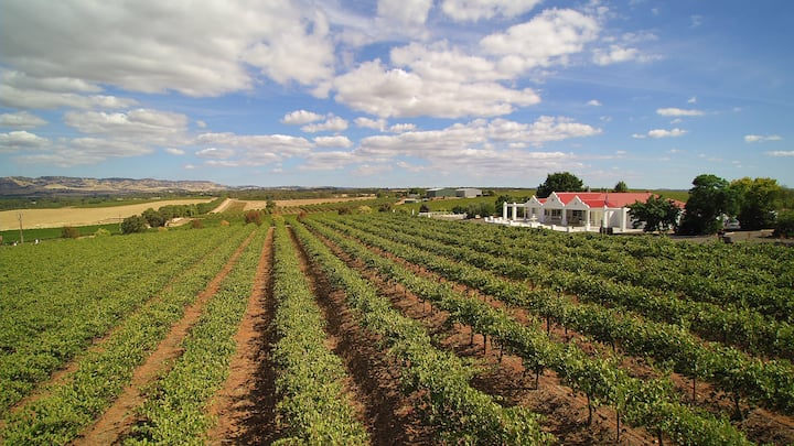 1837 Barossa Luxury Vineyard Cottage. S Australia