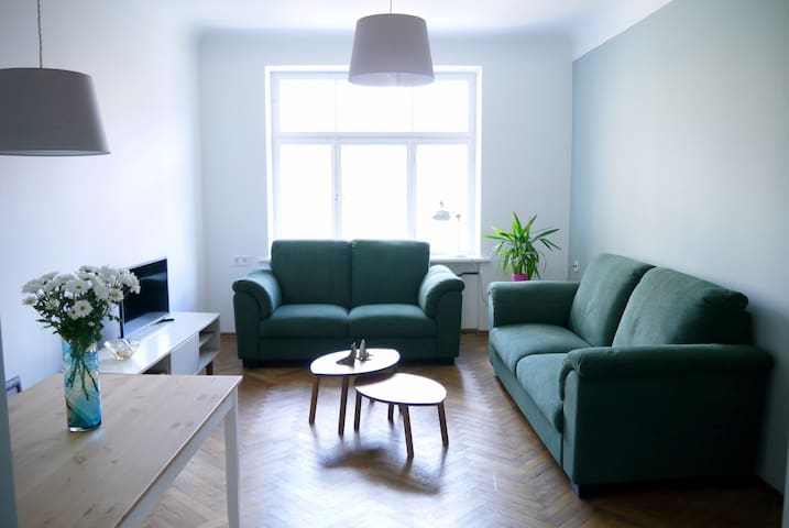 Beautifully sunny, Cosy two bedroom 75m2 apartment - Riga - Appartement