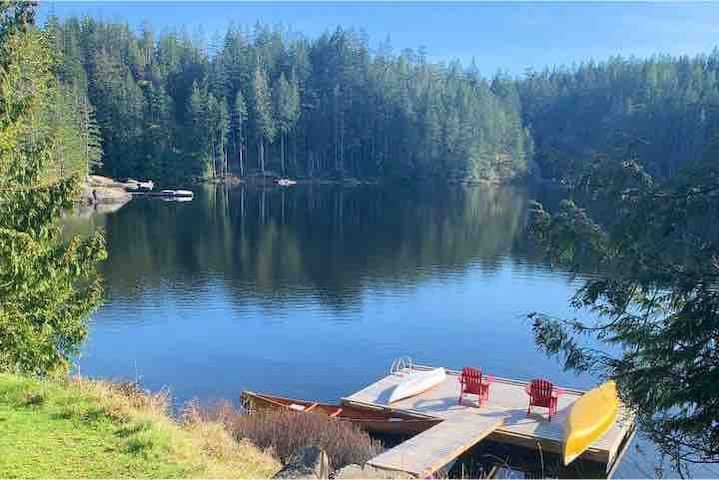 Shared dock just steps from the tree house, great for swimming. Canoe and paddle board available for guests.