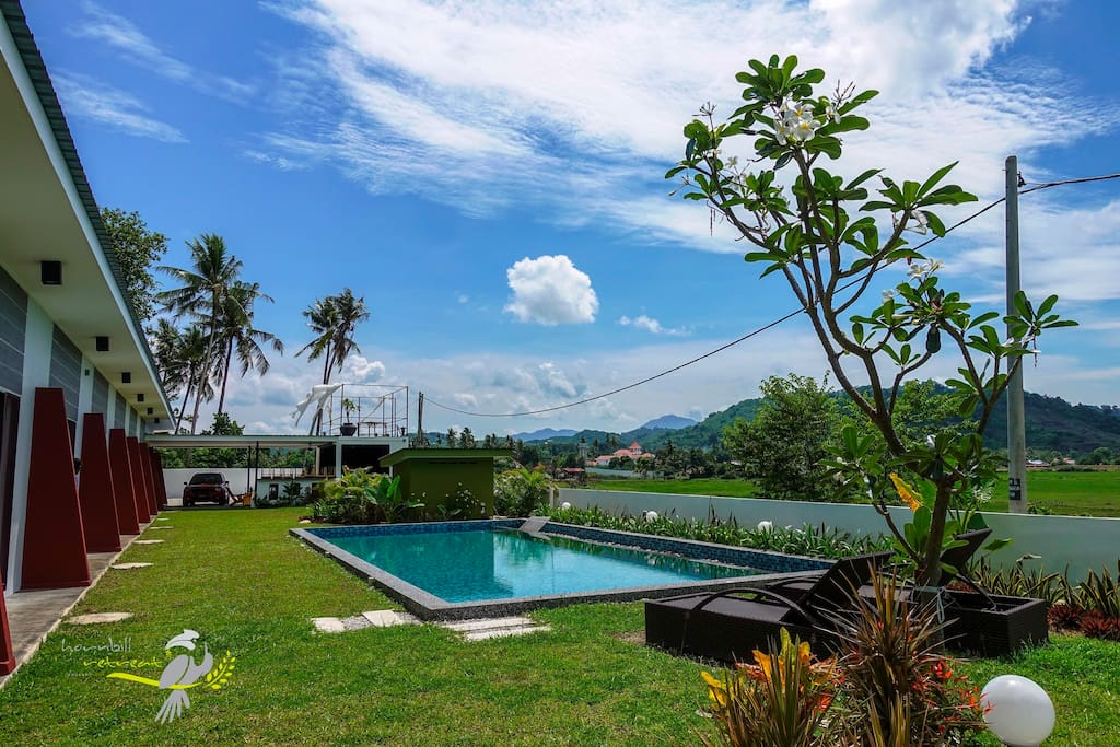 Green yard and swimming pool just in front of your room.