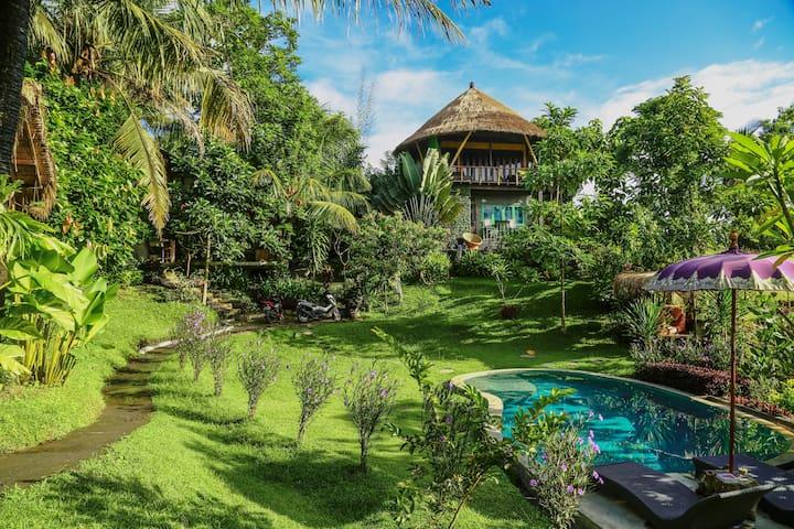 Balian Treehouse resort with pool (2 houses)