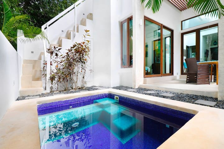 Gorgeous 2BR   in Akumal  Sleeps 4! with Private Plunge pool.