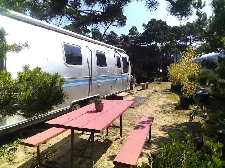 Airstream at Exploding Whale Beach Camp
