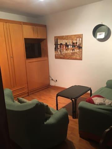 Apartamento en el centro de León. - León - Huoneisto