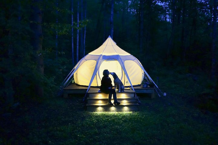 EarthSeed: A Quiet Reflective Space in the Smokies