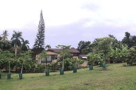 Luana Cottage - Hana - House