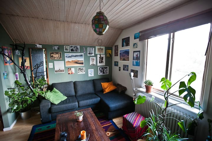 Cozy attic flat with free parking