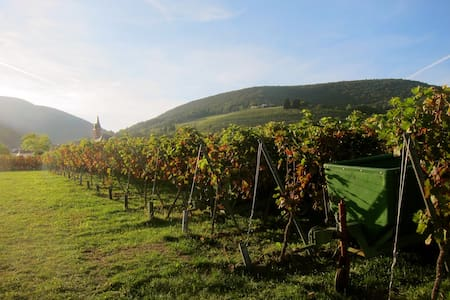 Casa Ana - Urlaub für Genießer! - Gleiszellen-Gleishorbach