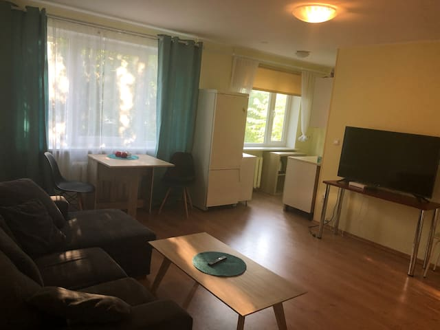 Rohu apartment