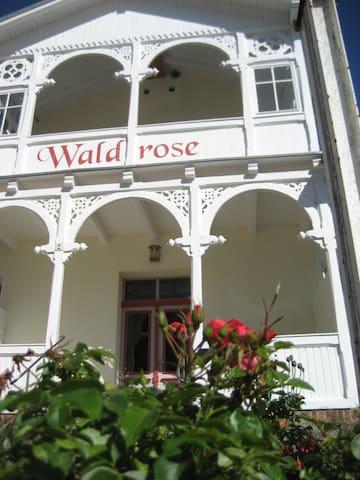 Pension Waldrose - Fewo Wittow