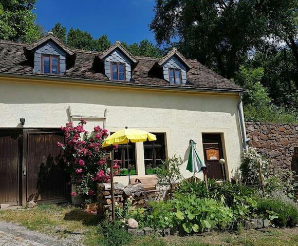 Wassermühle im wildromantischem Schanzenbachtal