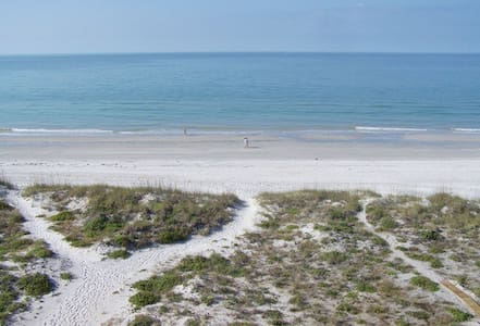 Have a Wonderful Time on the Beach at the Chambre - Madeira Beach
