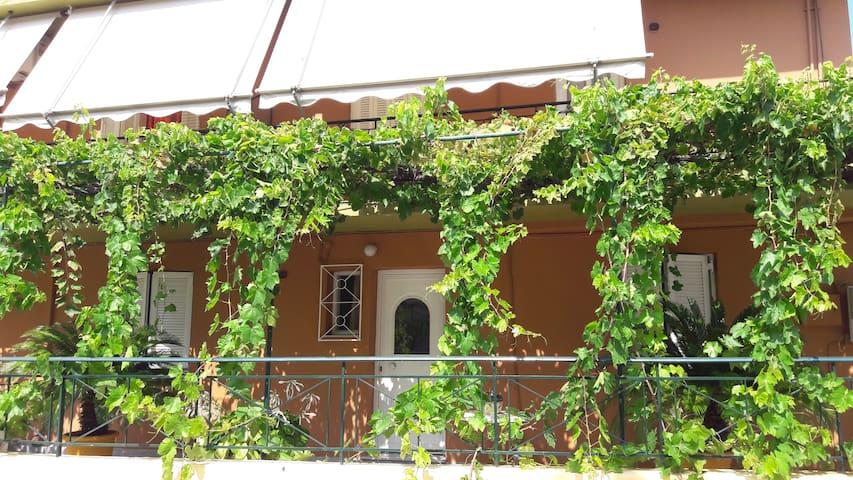 Ifigenia Apartments Poros Kefalonia