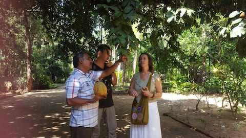 Stay at Snehatheeram Organic Spice Walk