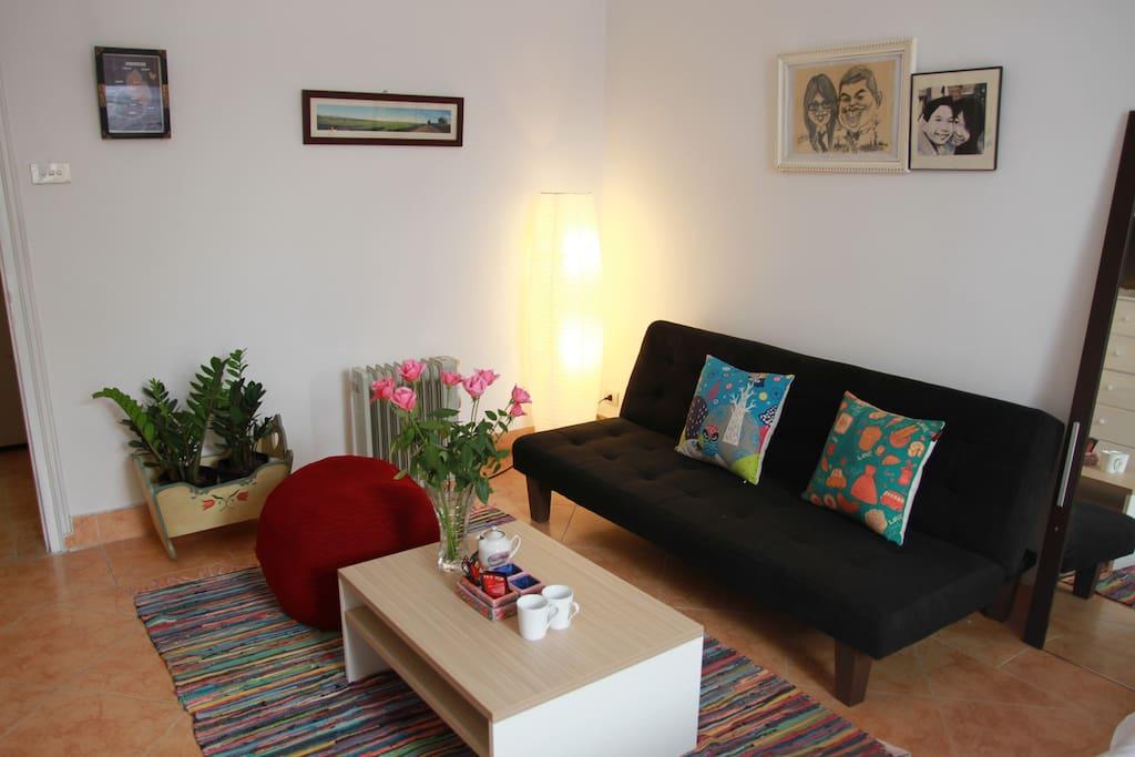 sofa and tea/coffee table