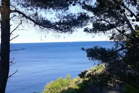 New apartments, amazing view, Mljet - Apartment