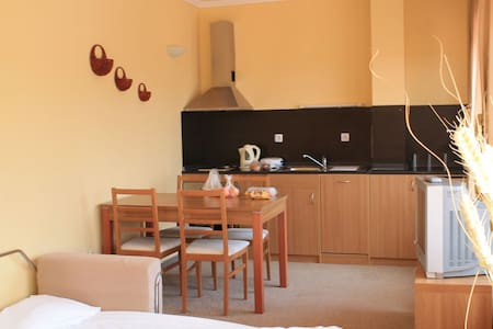 Comfy apartment with wonderful view - Пампорово - 公寓