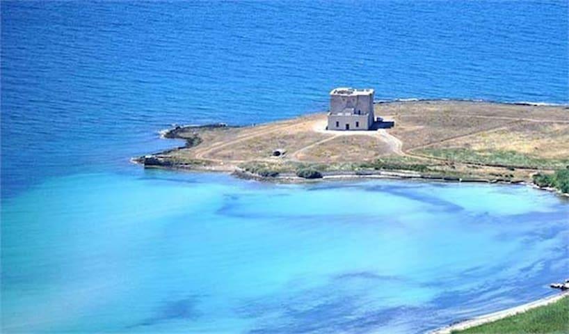 Area marina protetta di Torre Guaceto a 15km dalla casa.
