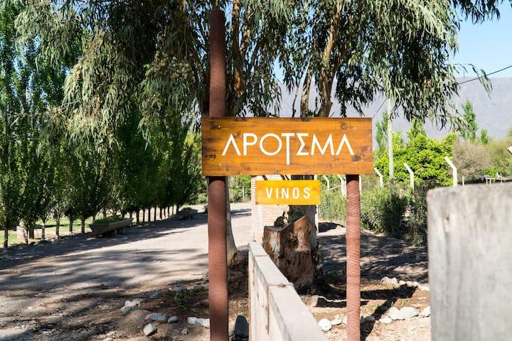 Posada Bodega Apotema, simplemente vivir....