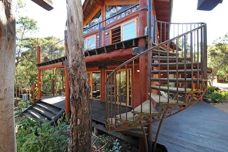 ECO Tree House - Rosebud