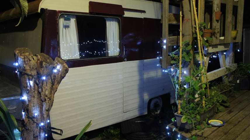 Night-time; (fairy) lights for good visibility, up 4 steps to the deck and back door.