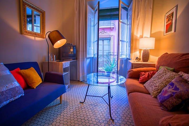 Apartamento calle de la virgen - Granada - Apartamento