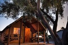 002+Colorado+River+Rustic+Cabin+Rental+Sleeps+6