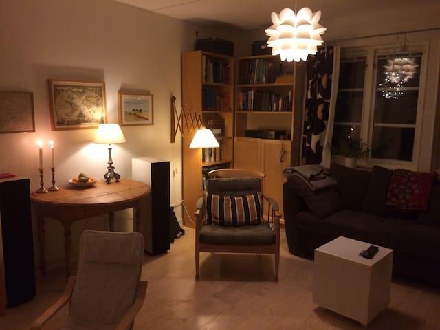 Nice house in Lund - Lund