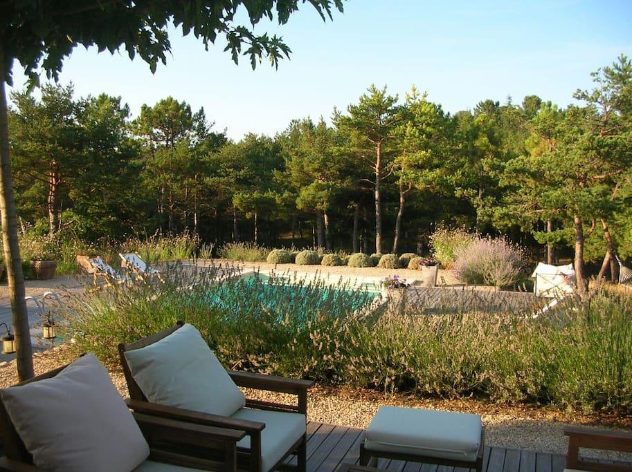 la vue sur la piscine exposition sud