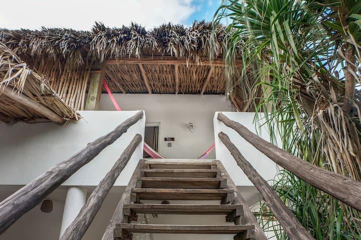 Habitación Tiburón Ballena - Casa María Bonita