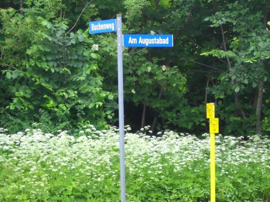 Abzweig Lindenstraße zum Buchenweg und zum Augustabad