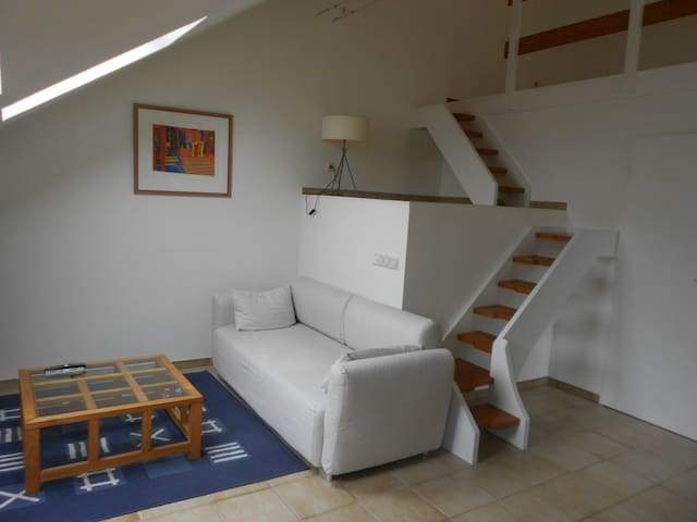 Charming duplex with direct bus connection to Lux