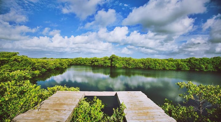 Nativus Glamping & Cenote Tent 5