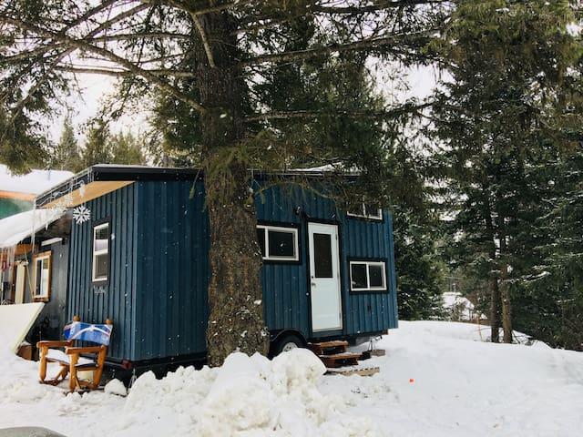Tiny house near Fernie