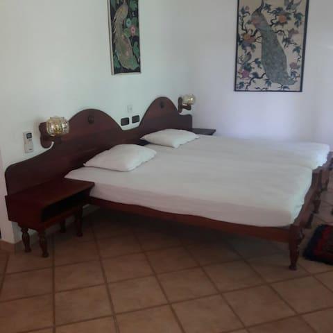 Paradise Room Sri Lanka / Aluthgama mit Frühstück - Aluthgama - Pension