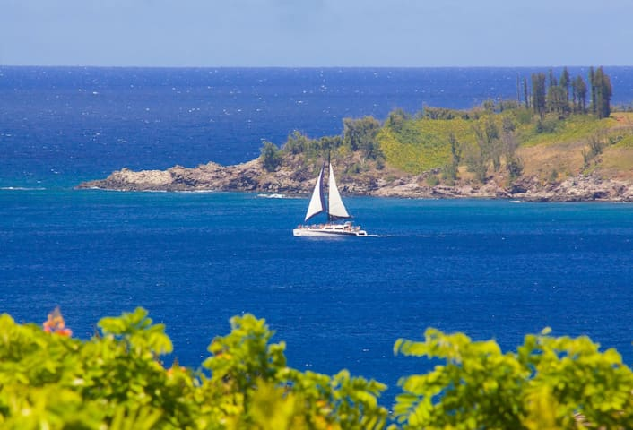 Enjoy stunning ocean views from the privacy of your own villa