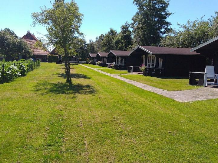 Blokhut 5 gelegen op minicamping te Wijnjewoude.
