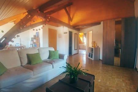 Confortable 2p. en attique, au coeur de Carouge - Carouge - Wohnung