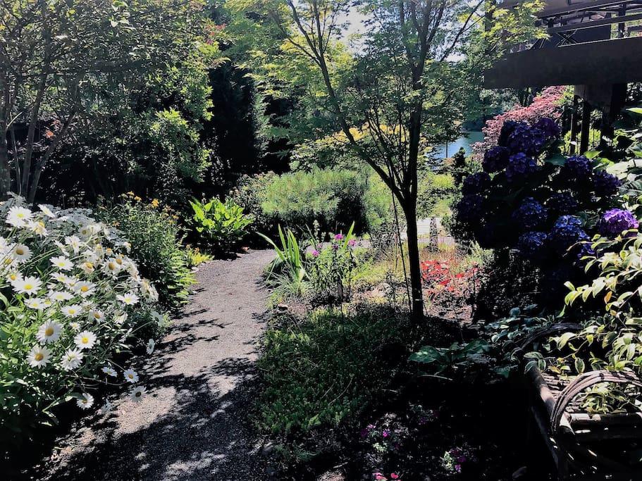 Garden path to Suite