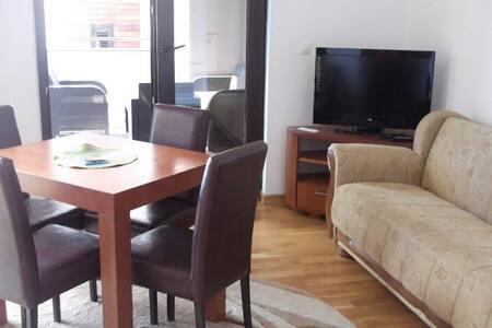 Уютная квартира в элитном месте - Rafailovići - 公寓